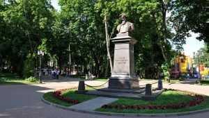 Брянский парк-музей имени Толстого отпраздновал 45-летие своего статуса
