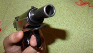 Пьяный дятьковец решил припугнуть соседа пистолетом и выдал себя