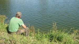 «Взяла на воблер цсуюки»: брянские рыбаки стали ботать по-марсиански
