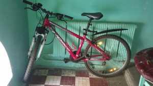 У жительницы Брянска сосед-уголовник украл велосипед