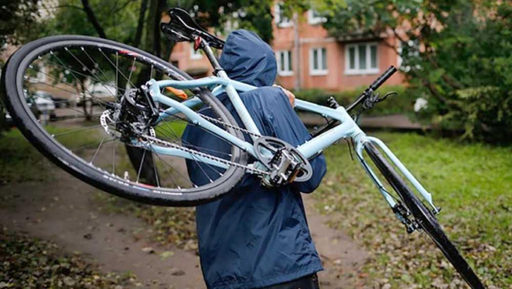 Лишившийся велосипеда житель Жуковки в отместку украл два чужих
