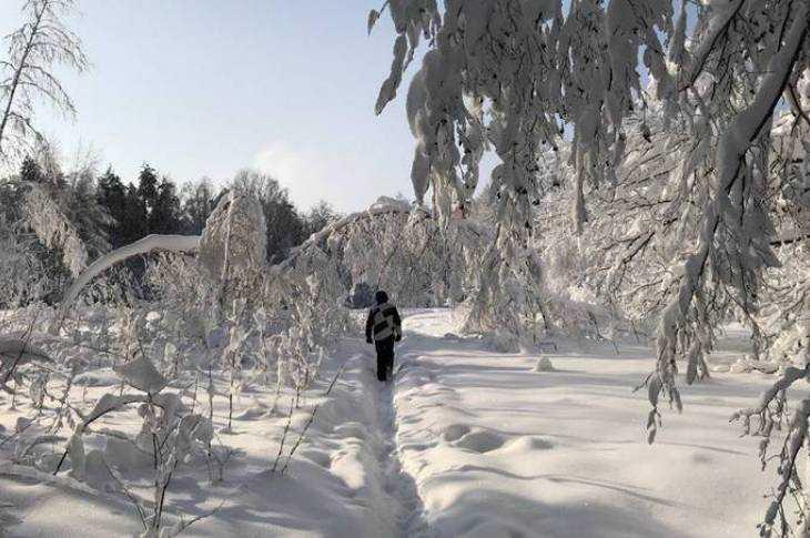 Брянская область утонула в снегу