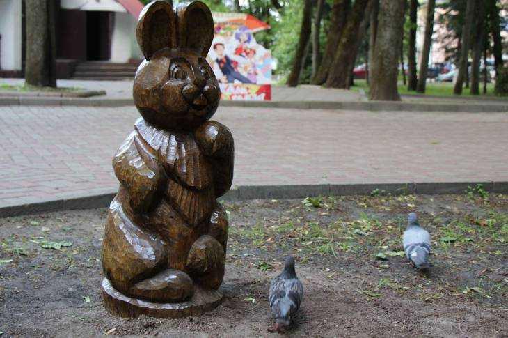 Брянские голуби подружились со всеми молчаливыми обитателями парка Толстого
