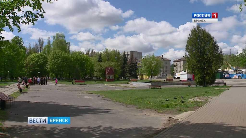 Судьба Пролетарского сквера в Бежицком районе Брянска вызвала споры