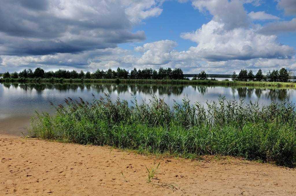 В июне в водоёмах Брянской области утонули 23 человека