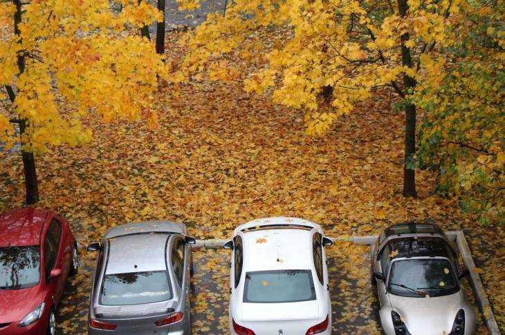 Парковка в золоте