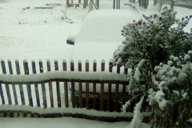 Первый снег в Брянской области в 2016 году